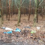 Müll im Schöneiche Wald (Foto: Anna Kruse)