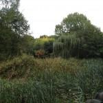 Kleiner Spreewaldpark - pestizidfrei