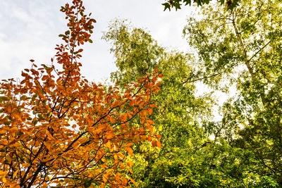 Herbst - Zeit für eine Radtour (Bild: Horst Schröder / pixelio.de)